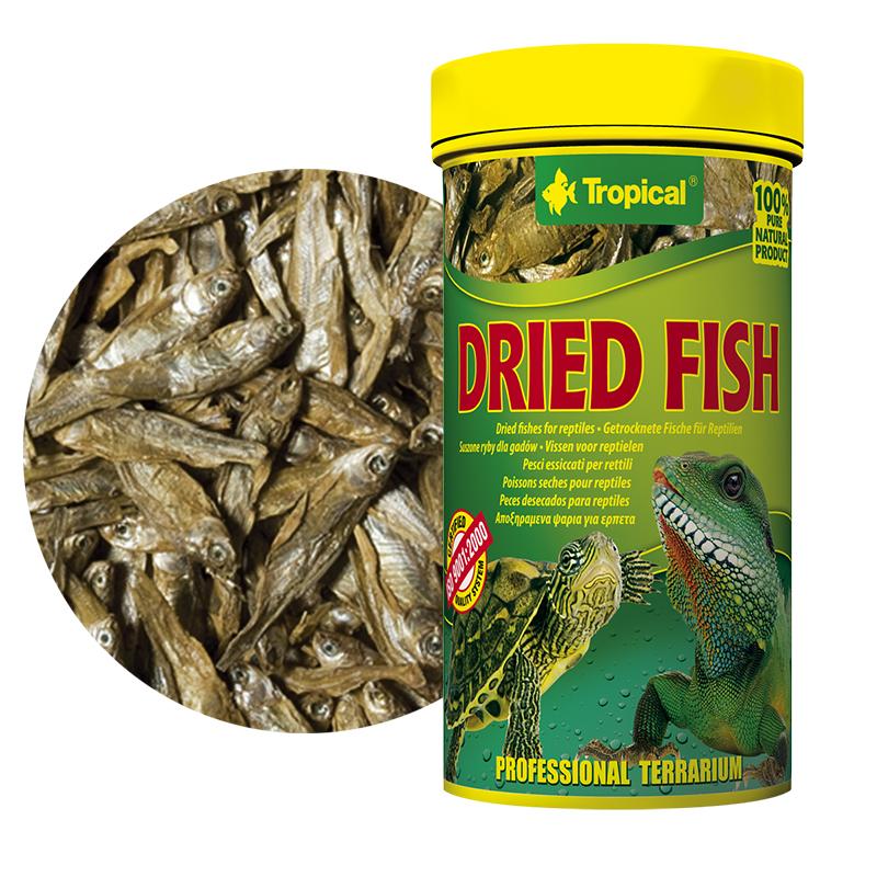 Tropical dried fish pesci essiccati per tartarughe for Tartarughe grandi