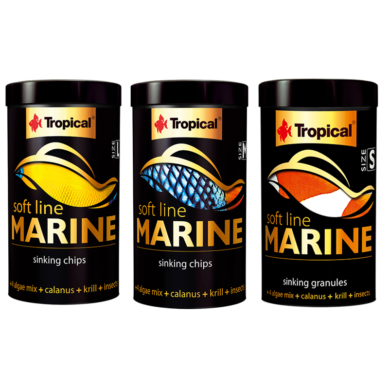Tropical softline marine negozio acquari for Pesci marini vendita on line