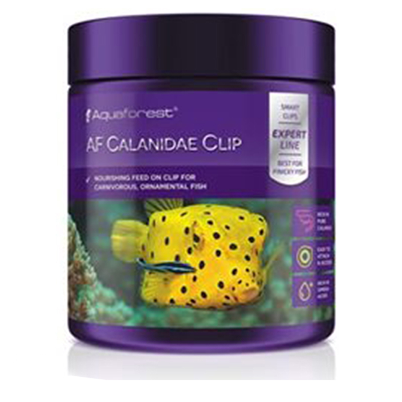 Aquaforest af calanidae clip negozio for Pesci marini vendita on line