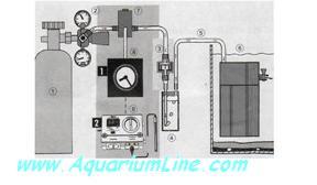 """L'immagine """"http://www.aquariumline.com/catalog/images/CO2Imm.JPG"""" non può essere visualizzata poiché contiene degli errori."""
