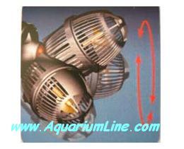 """L'immagine """"http://www.aquariumline.com/catalog/images/Koralia2.JPG"""" non può essere visualizzata poiché contiene degli errori."""
