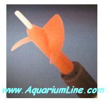 """L'immagine """"http://www.aquariumline.com/catalog/images/Koralia5.JPG"""" non può essere visualizzata poiché contiene degli errori."""