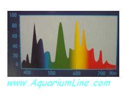 """L'immagine """"http://www.aquariumline.com/catalog/images/Visilux1.JPG"""" non può essere visualizzata poiché contiene degli errori."""