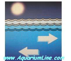 """L'immagine """"http://www.aquariumline.com/catalog/images/Wavemaker4.JPG"""" non può essere visualizzata poiché contiene degli errori."""