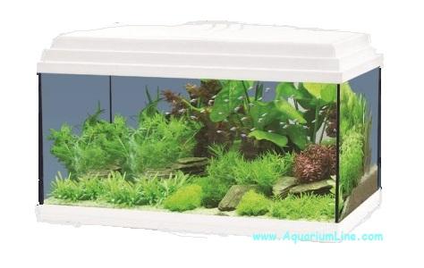 Aquatlantis aqua bermudes negozio acquari for Acquario bianco usato