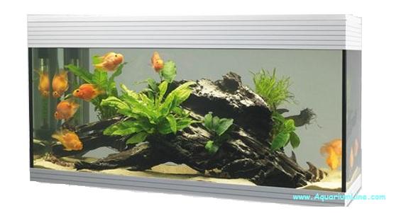 Askoll pure kit xl led negozio acquari for Acquario bianco usato