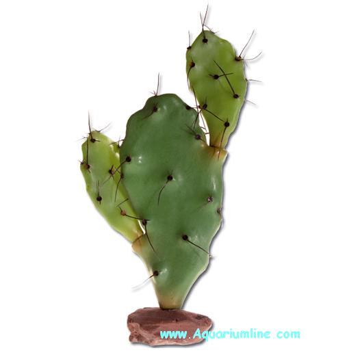 Aquariumline pianta artificiale per terrari cm 60 for Pianta cactus