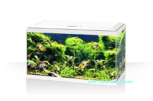 Ciano acquario aqua 60 led colore bianco aquariumline for Acquario bianco usato