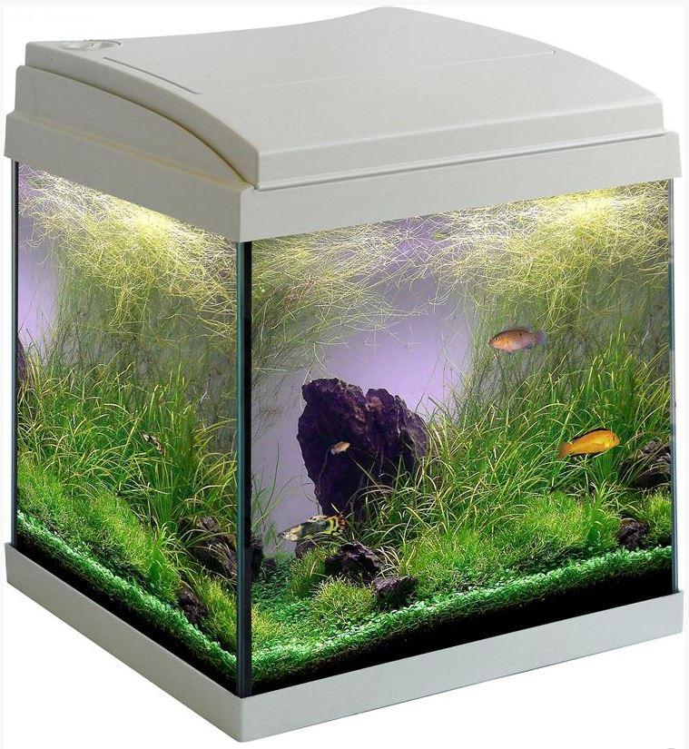 Mtb milo 30 cubik ledline bianco nero for Acquario bianco usato