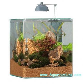 eheim aquastyle 24 nano aquarium set aquarium line. Black Bedroom Furniture Sets. Home Design Ideas
