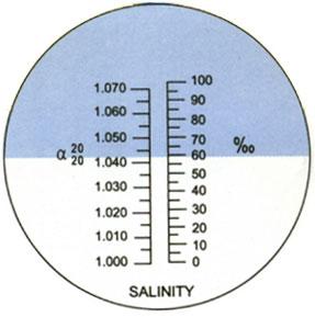 L'immagine �http://www.aquariumline.com/catalog/images/imag_refrattometr.jpg� non pu� essere visualizzata poich� contiene degli errori.