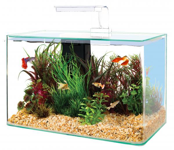 Zolux Clear 40 Colore Bianco - acquario 20L cm40x20x33h con filtro interno e plafoniera LED