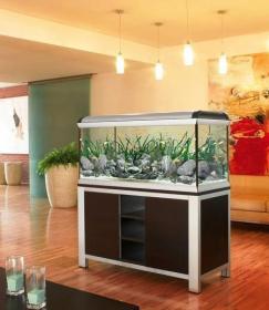 Mobile acquario tutte le offerte cascare a fagiolo for Acquario casa prezzi