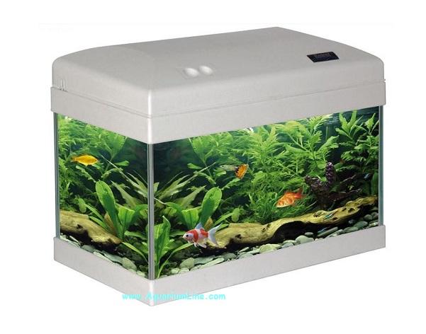 Mtb babol ekoline bianco negozio acquari for Acquario bianco usato