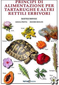 Testudo edizioni principi di alimentazione per for Accessori acquario tartarughe