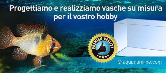 Aquarium line migliori prodotti per il tuo acquario e for Vasche per tartarughe marine