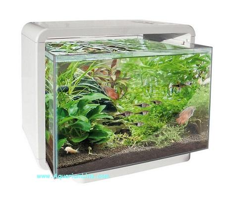 Superfish home negozio acquari for Acquario bianco usato