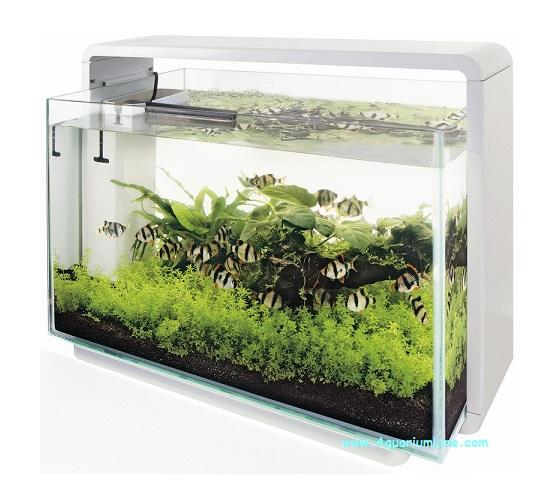 Superfish home 80 colore bianco acquario con for Acquario bianco usato