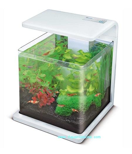 Superfish wave 15 colore bianco mini acquario panoramico for Acquario bianco usato