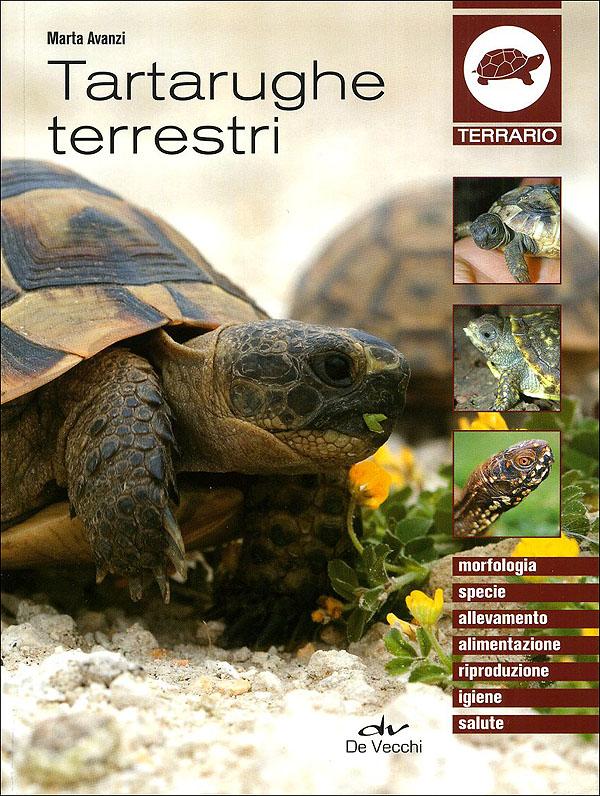 De Vecchi Editore Tartarughe Terrestri
