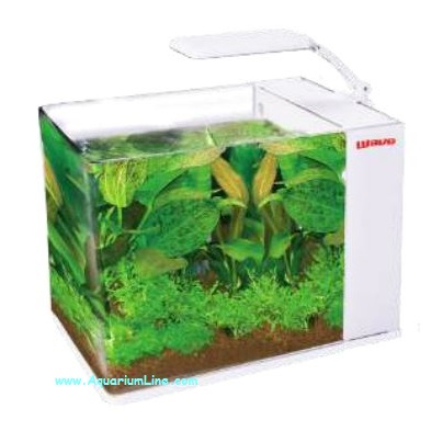 Wave aqua orion 40 colore bianco mini acquario 18l for Acquario bianco usato