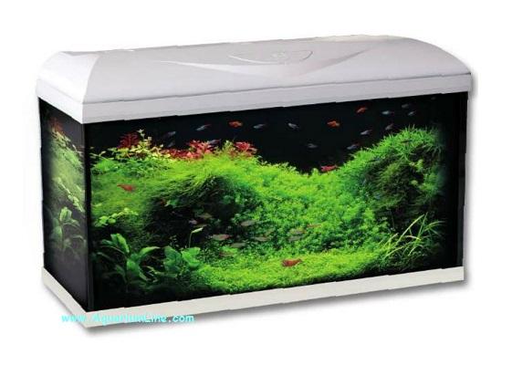 Wave poseidon riviera 80 led colore bianco acquario 96l for Acquario bianco usato