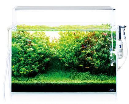 Plafoniera Led Acquario 30 Cm : Ada aquasky plafoniera a led w k per acquari da