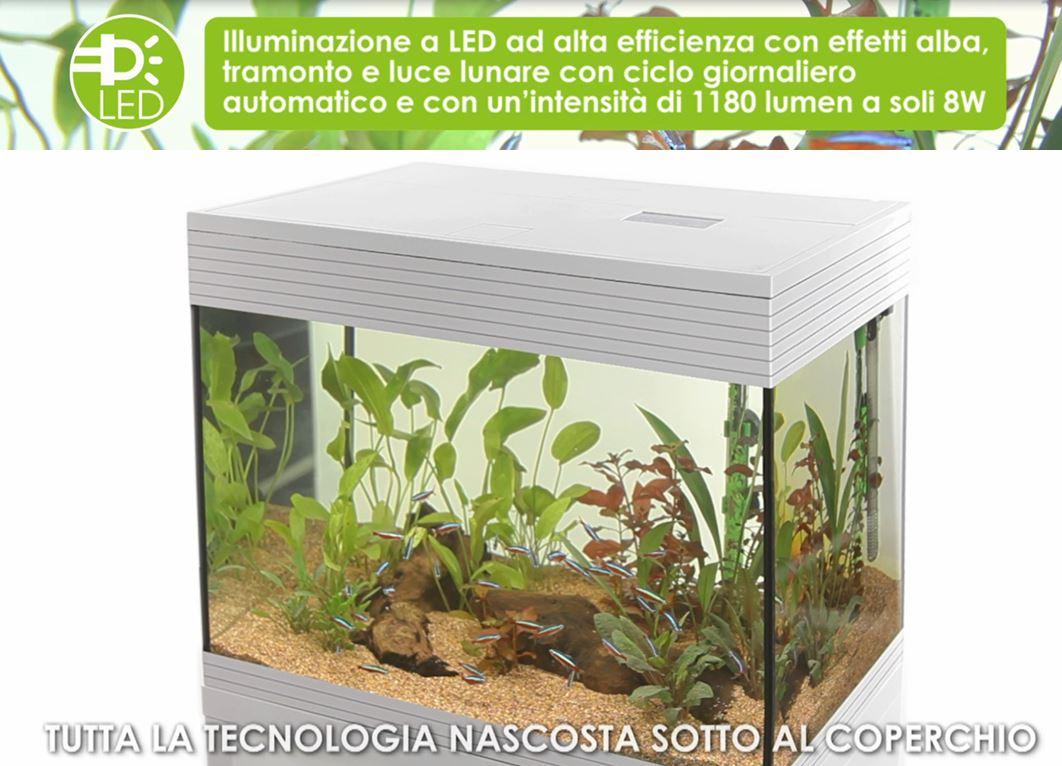askoll pure kit xl led | aquariumline.com - negozio acquari - Acquario Casa Funzionamento E Prezzi