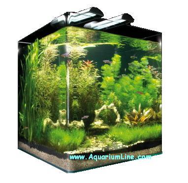 dennerle 5861 nano cube 60 litres size 38x38x43h aquarium line aquarium store. Black Bedroom Furniture Sets. Home Design Ideas