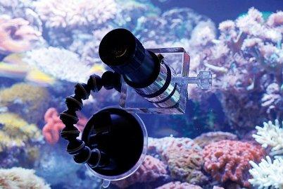 Aquariumline nanoscope negozio acquari for Acquari moderni