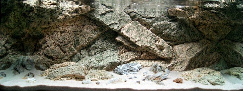 Aql background 3d modello rock for Sfondi per acquari