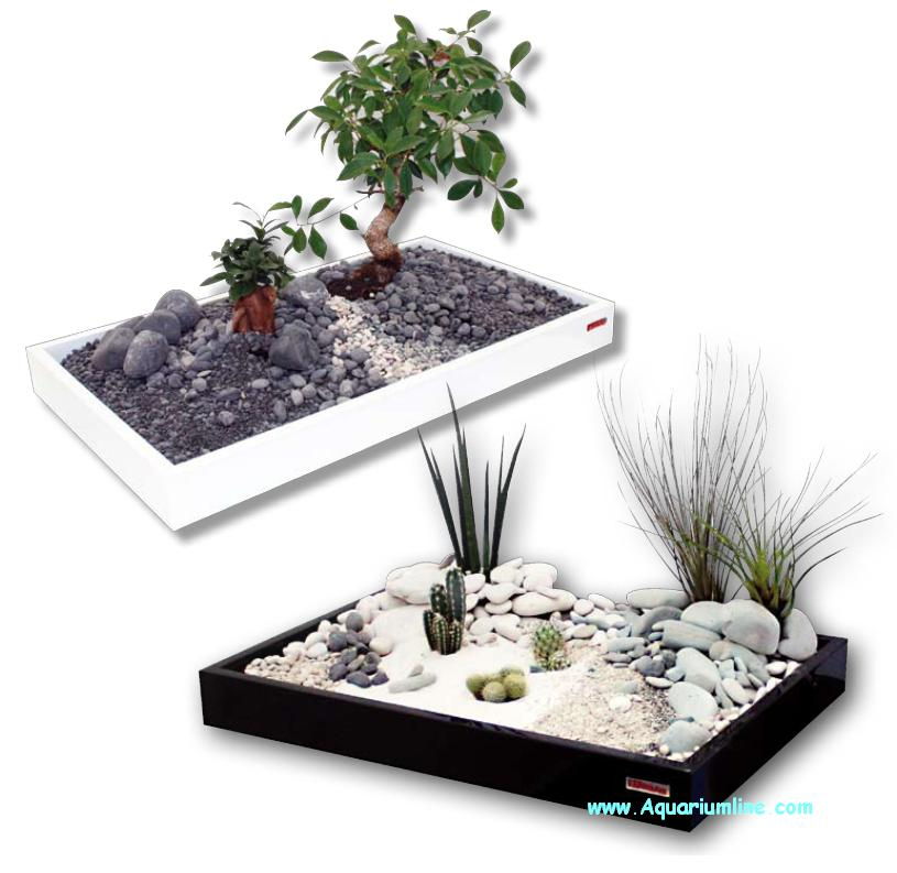 Wave zen artist tray zen artist aquarium line aquarium for Decoration zen aquarium